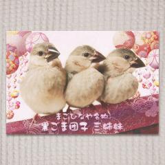 ポストカード 黒ごま団子三姉妹