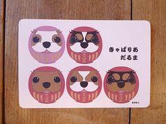 めるもこ キャバリア犬ポストカード(福だるま)