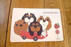 めるもこ キャバリア犬バスポストカード