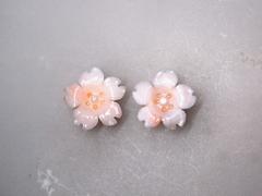 白サンゴ 桜の花のルースペア252