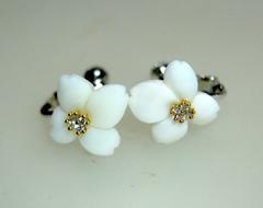 白サンゴ お花のイヤリング