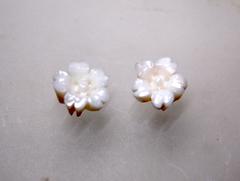 白サンゴ 小さな桜の花のルースペア255