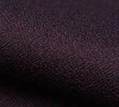 01am-009-S13:アムンゼン:無地:古代紫