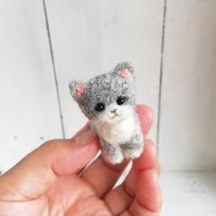 グレーソックス猫お座り*スモール子猫