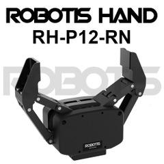 RH-P12-RN[905-0022-000]