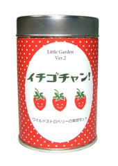 リトルガーデンVer.2 イチゴチャン