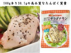 無添加サラダチキン ブラックペッパー&ガーリック味 高たんぱく質【国産鶏の胸肉使用 常温で長期保存】10食セット/プロテインの代替品や非常食に最適 鶏肉の美味しさこだわった本物志向の方に