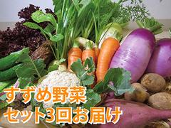 3回お届け・すずめ野菜セット(写真はイメージです)