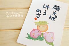 ポストカード【願えば叶うのさ(さんかんの実)】