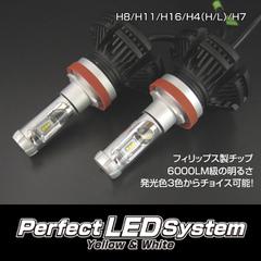 パーフェクトLEDシステム H11/8