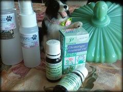 舐めても安心♥アロマ虫除けスプレー【愛犬】の免疫力を邪魔しません