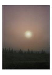 <アクリル画>「立冬の朝」 A4アートポスター