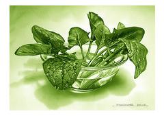 <素彩画>ホウレン草絵の具で描く「ホウレン草」 A4アートポスター