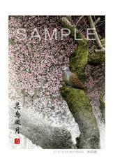<水彩画>「花鳥風月」 ポストカード