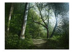 <水彩画>「木漏れ日」 A4アートポスター
