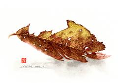 <素彩画>落ち葉絵の具で描く「落ち葉」 A4アートポスター
