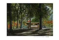 <水彩画>「秋陽」 ポストカード