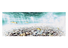 <水彩画>「魚の道」 A4・A3アートポスター