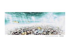 <水彩画>「魚の道」 ポストカード