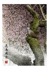 <水彩画>「花鳥風月」 A4アートポスター