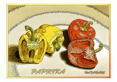 <素彩画>パプリカ絵の具で描く「パプリカ」 A4アートポスター