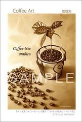 <素彩画>「コーヒーの木とコーヒー豆」 ポストカード