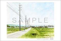 <水彩画>「田舎道」 ポストカード