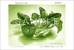 <素彩画>「ホウレン草」 ポストカード #季節(冬)のお便りに#