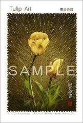 <素彩画>「チューリップ」 ポストカード