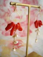 【受注生産】赤の枝珊瑚と淡水パールのループピアス(イヤリング)