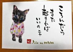 手描きポストカード(新)