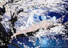 F-20:朧月夜に夢桜
