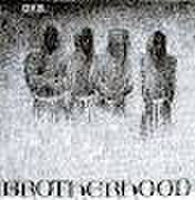DYS - Brotherhood CD