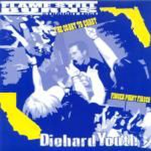 "【中古】Diehard Youth / Flame Still Burns - split 7""紫盤"