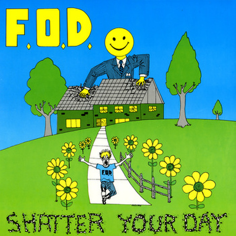 Flag of Democracy - shatter your day LP