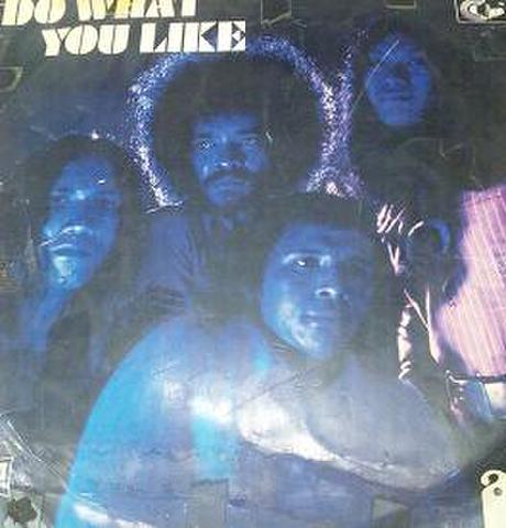 【中古】AKA - Do what you like LP 【超メガレア!】