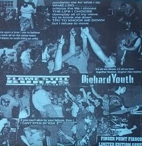 【中古】Diehard Youth / Flame Still Burns - The Coast To Coast 7""