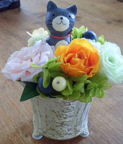 ☆猫ちゃん花畑
