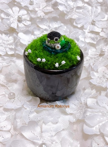 ミニ鉢インコ(ウロコ)