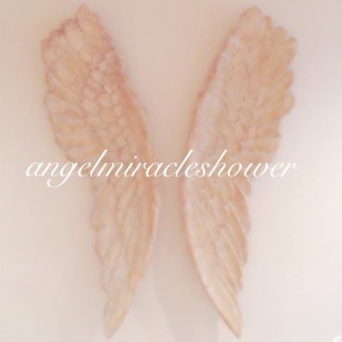 大きな羽のオブジェ