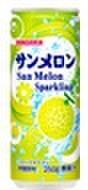 サンメロン250ml缶(30本入)