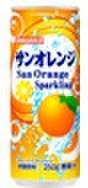 サンオレンジ250ml缶(30本入)