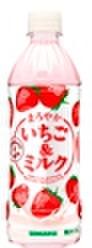 まろやかいちご&ミルク500mlPET(24本入)