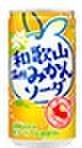 和歌山温州みかんソーダ190g缶(30本入)