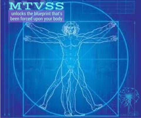 アクセス・ボディープロセス™-MTVSS-講座
