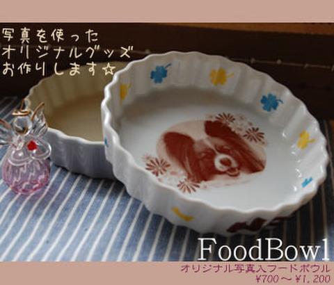 5 フードボウル(別注・小) 白