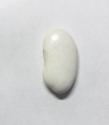 大福豆 300g