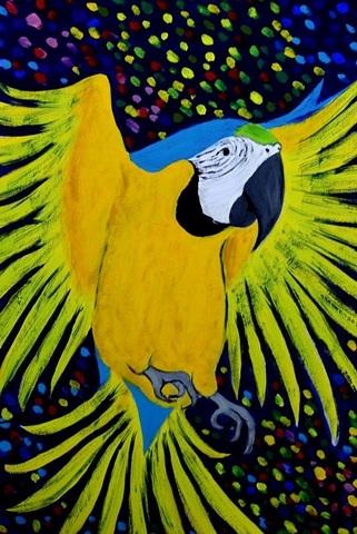 インコ臭ポストカード                (ルリコンゴウインコ)                秘密の森のコンゴウインコ