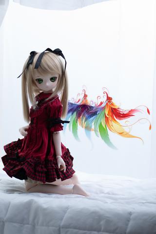 虹の妖精の羽