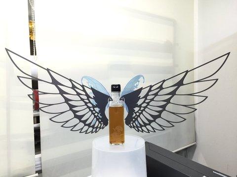 堕天使の羽